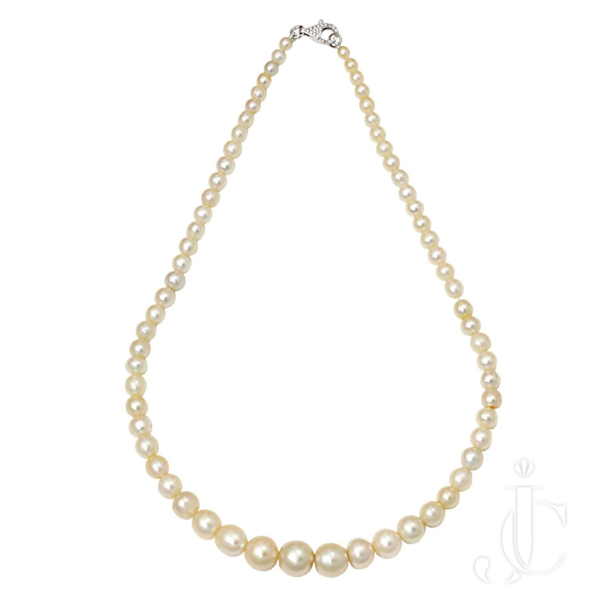 Natural Saltwater Pearl Necklace 3.38 to 9.64 mm- 143.35 Chow